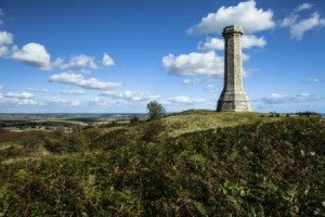 Hardy Monument, Black Down, Dorset.